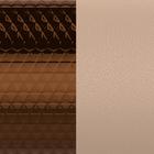 Cuir Motif Bronze Cubique / Pêche Blanche image number 1