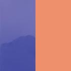 Vinyle Violet Vernis / Saumon image number 1