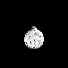 Pendentif Fleurs du Nil Rond 25 mm, Finition argentée image number 1