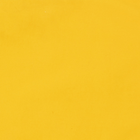 Lining Les Dentelles, Yellow image number 1