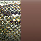 Cuir - Manchettes et Sacs, Reptile Graphique / Chocolat image number 1