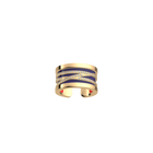 Liens Ring, Gold finish, Soft Coral / Midnight Blue image number 2